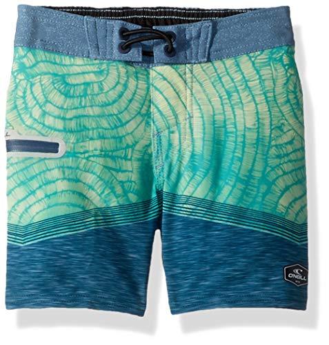 O'Neill Little Boys' Hyperfreak Quick Dry Stretch Boardshort, Aquarius, L/7