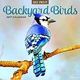 2017 Backyard Birds Wall Calendar