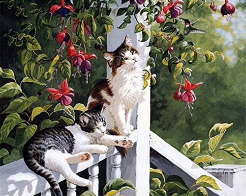 ABEUTY DIY Paint by Numbers for Adults Beginner - Two Cats in The Garden 16x20 inches Number Painting Anti Stress Toys (No Frame) - $11.99