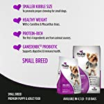 Nulo-Small-Breed-Grain-Free-Dry-Dog-Food-With-Bc30-Probiotic-Salmon-And-Red-Lentils-Recipe-11B-Bag