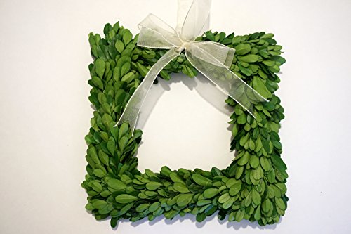 Preserved Boxwood Square Wreath 8 in. by Tradingsmith