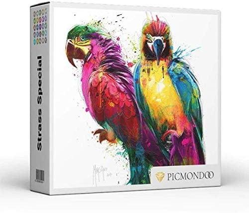 runde Strass Steine Vollbild XL Color Papagein 60x60cm Diamond Painting Strass Special