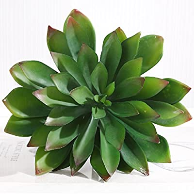 Luyue Four Kinds of Green Artificial Succulent Plants Aloe Lotus Agave Pack of 1pc (Style 4)