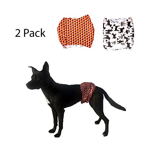 Brooke's Best Belly Bands for Male Dogs 2 pack (M, Orange print/Brown Dog print)