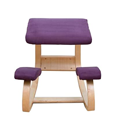 Amazon.com: HQCC DLDL Ergonomic Posture Chair Fitness Stool Student ...