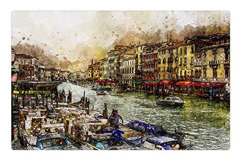 - Tree26 Indoor Floor Rug/Mat (23.6 x 15.7 Inch) - Venice Grand Canal Venezia Boats Italian Water
