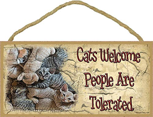 Dozili Cats Welcome People are Tolerated Kitten Pile Kitty Cat Wooden Hanging Sign Beautiful Plaque Sign 6