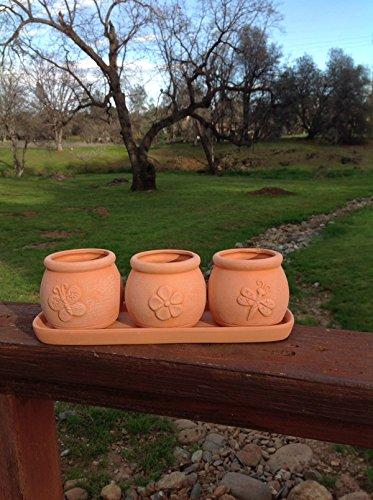 Terra Cotta Clay Set Of 3 Small Round Embossed Earthenware