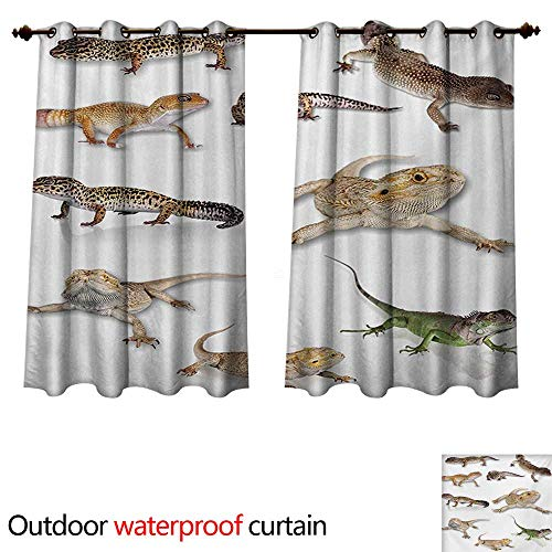 Reptile Outdoor Ultraviolet Protective Curtains Colorful Staring Leopard Gecko Family Image Primitive Reptiles Wildlife Art Print W55 x L45(140cm x ()