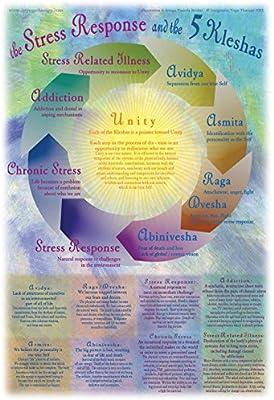 Amazon Com Integrative Yoga Therapy Iyt Kleshas Poster Posters Prints