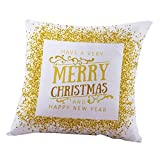 Weiliru Zippered Pillowcases Christmas Pattern Background Decorative Throw Pillow Cover,Pillow Cases Cushion Cover for Home Sofa Car