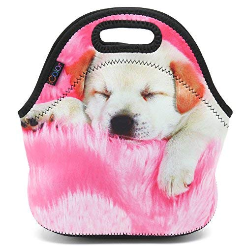 ICOLOR Sleepy Dog Lunch Carrying Bag, Kids Adults Thermal Neoprene Lunch Tote Bag, Lunch Box & Food Container, Insulated Soft Lunch Case, Food Storage Cooler - Great Gift for Boys,Girls(HST-LB-005)