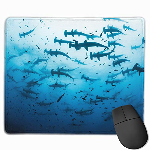 HBLSHISHUAIGE Mouse Pad Schooling Scalloped Hammerhead Sharks at Islands Rectangle Non-Slip 9.8in11.8 in Personalized Designs Gaming Rubber Mousepad Stitched Edges Mouse Mat