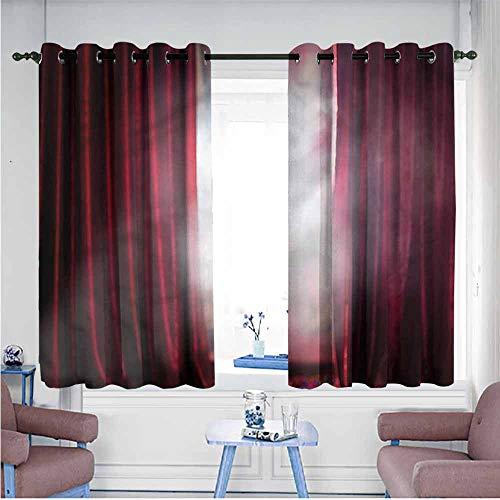 (Breathable Curtain Musical Theatre Performance Singer Printing Insulation W55 xL45 Suitable for Bedroom,Living,Room,Study, etc.)
