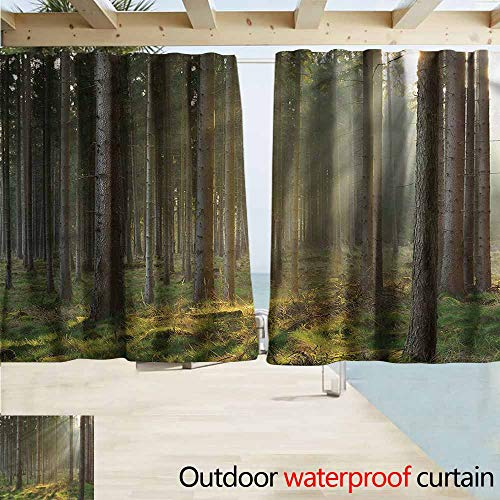 (MaryMunger Rod Pocket Curtains Forest Sunbeams Misty Spruce Woods Draft Blocking Draperies W63x45L Inches)