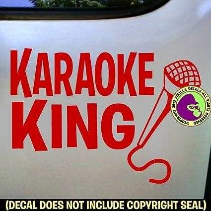 Amazon com: KARAOKE KING Singing Microphone Sing Song Vinyl