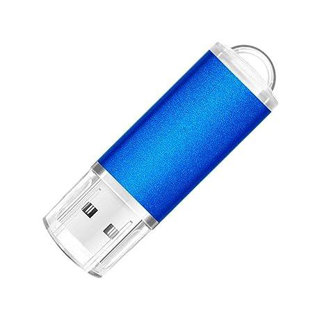 Erasky Pendrive 256GB Chiavetta USB Metallo USB Flash Drive Con portachiavi portatile da trasportare 256GB