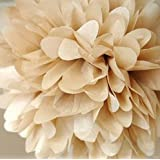 ANKKO 10Pcs Tissue Ball Pom-poms Paper Flowers Wedding Party Decoration Gold