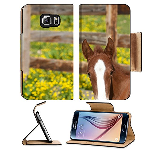 Luxlady Premium Samsung Galaxy S6 Edge Flip Pu Leather Wallet Case IMAGE 21178919 A red foal with a white blaze