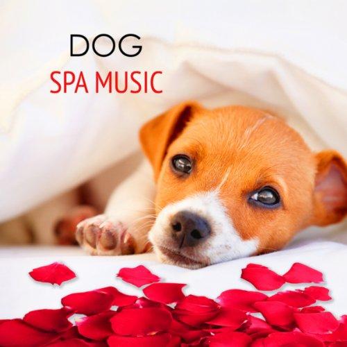 Dog Spa Music - Calming Relaxi...