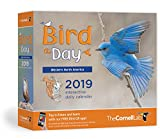 Bird-A-Day 2019 Daily Calendar: Western North America