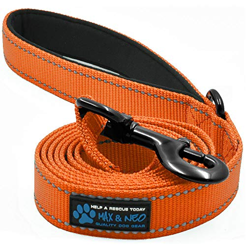 Max and Neo Reflective Nylon Dog Leash - We Donate a Leash to a Dog Rescue for Every Leash Sold (Orange, 6x1)