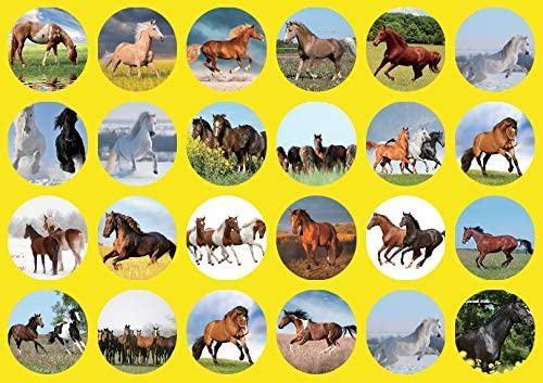 2021-2022 Wall Calendar 14 x 12 Canadian and US Holidays For horse Lovers