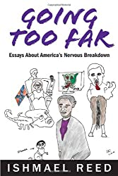 Going Too Far: Essays About America's Nervous Breakdown