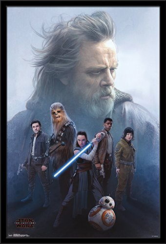 Trends International Wall Poster Star Wars Episode VIII the Last Jedi Protect