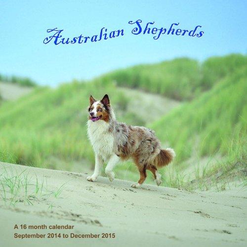 Australian Shepherds Calendar - 2015 Wall calendars - Dog Calendars - Monthly Wall Calendar by Magnum MegaCalendars