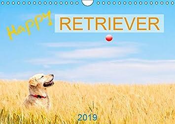 Happy Retriever (Wandkalender 2019 DIN A4 quer): 13 liebevoll ausgesuchte Golden Retriever Portraits (Monatskalender, 14 Seiten ) (CALVENDO Tiere)