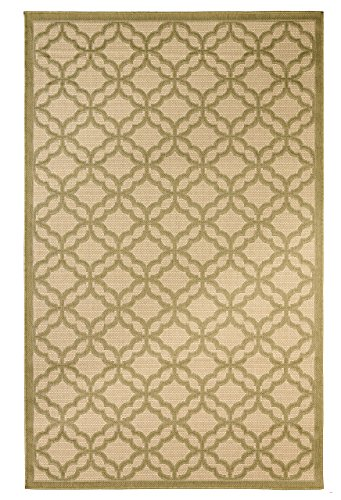 Dynasty Rugs Mats Flat Weave Indoor/Outdoor Rugs with Contemporary Festival Design Area/Patio Flooring Carpets, Green (Dynasty Rug Rug)