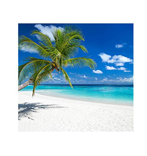 Advanced Graphics Tropical Beach Backdrop (Double Wide) Life Size Cardboard Cutout Standup