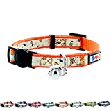 PAWTITAS Glow In The Dark Cat Collar with Safety Buckle and Removable Bell Cat Collar Kitten Collar Orange Cat Collar