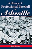 A History of Professional Baseball in Asheville, Bill Ballew, 1596291761