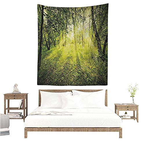 Magical Tapestry Hippie Freshening Morning in Nature Summer Season Sunset Environment Wilderness Mist Theme Occlusion Cloth Painting 70W x 93L INCH Green
