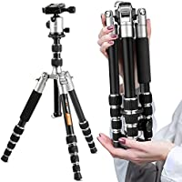 K&f Concept Compact Camera Tripod, 50 inch Lightweight Travel Tripod with Professional 360° Panorama Ball Head,1/4 Quick Release Plates for DSLR DV Canon Nikon Sony (TM2235)