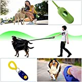 Dual Dog Leash, Double Dog Leash,360° Swivel No