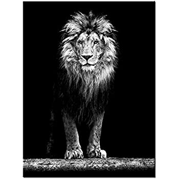 Amazon.com: First Wall Art - Black And White Lion Open ...