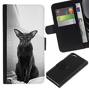 Leather Etui en cuir    Apple Iphone 6    Oriental Cat Habana Pelo Corto Negro @XPTECH