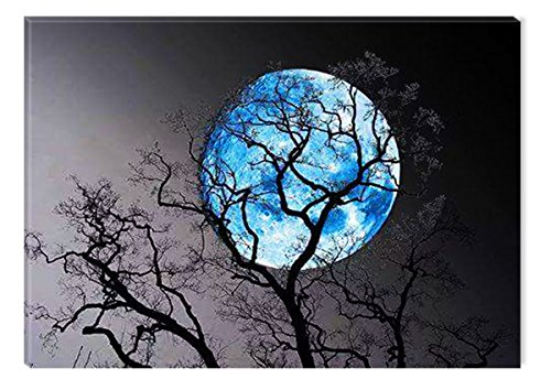 Startonight Canvas Wall Art Black and White Abstract Blue Moon and Tree in the Night, Dual View Surprise Artwork Modern Framed Ready to Hang Wall Art 100% Original Art Painting 31.5 x 47.2 inch by Startonight