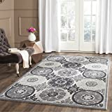 Safavieh Paradise Collection PAR645B Light Grey and Dark Grey Viscose Area Rug (8′ x 10′) Review