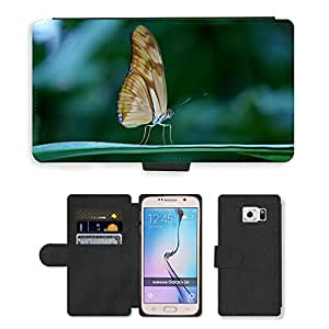Super Stella Cell Phone Card Slot PU Leather Wallet Case // M00144898 Butterfly Insect Wing Wildlife Bug // Samsung Galaxy S6 (Not Fits S6 EDGE)
