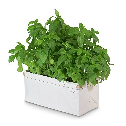 Patch Planters Easy, Compact Self Watering Herb & Greens Planter - Single Planter - Windowsill Herb