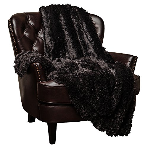 Chanasya Super Soft Shaggy Longfur Throw Blanket | Snuggly Fuzzy Faux Fur Lightweight Warm Elegant Cozy Plush Sherpa Fleece Microfiber Blanket | for Couch Bed Chair Photo Props - 50