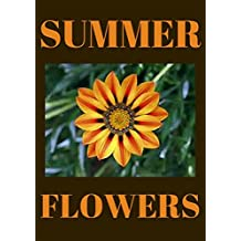 FLOWERS: SUMMERTIME FLOWERS: FLOWERS (Flowers that give great color all summer long and shade loveing summer flowers.)