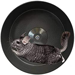 """Exotic Nutrition 15"""" Chin-Sprint : All-Metal Exercise Wheel for Chinchillas, Prairie Dogs, Rats & Other Small Animals"""