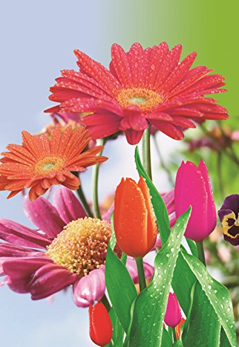 Judy's Flag Garden Flag Tulip Zinnia Colorful Spring Summer Bloom Double Sided 12.5'' X 18''
