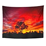 Emvency 60x80 Inch Tapestry Mandala Home Decor Colorful Beauty African Sunset In The Kruger National Park South Africa Red Safari Tapestries Bedroom Living Room Dorm