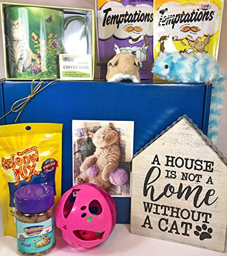 Cat Gift Box Basket for A Favorite Feline Fur Baby and His/Her Guardian - Send These Treats, Toys, and Mug to a Furry Cat/Kitten/Kitty Friend